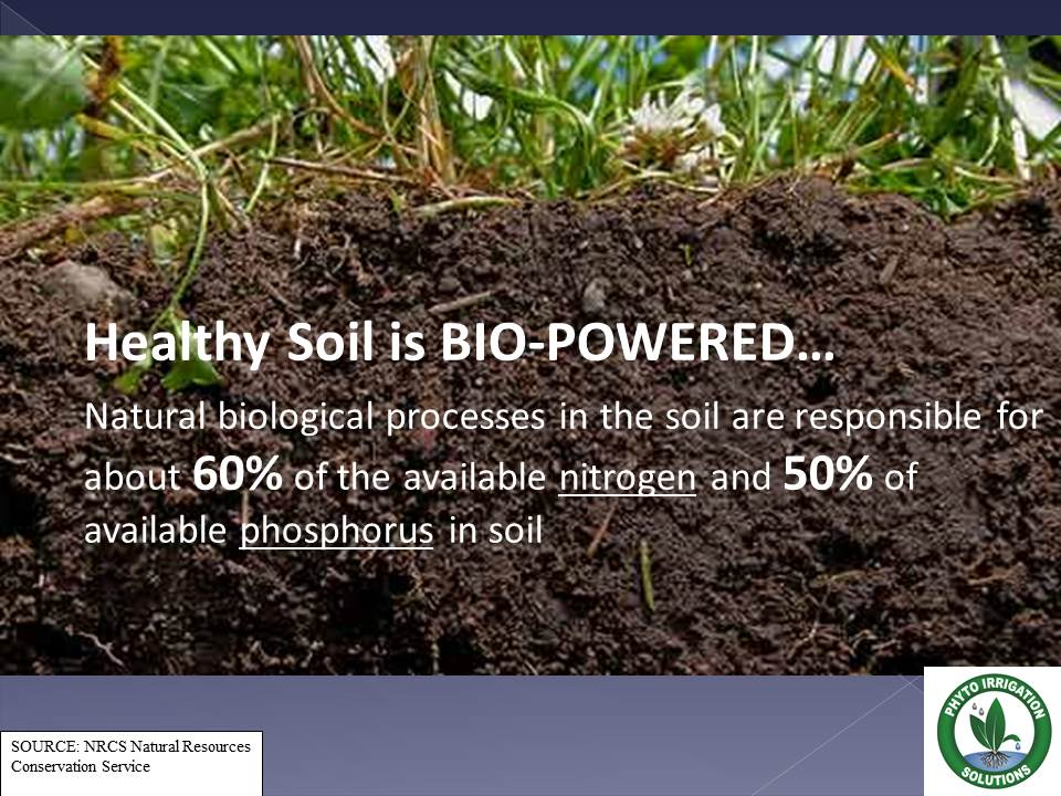 Soil science phyto for About soil science